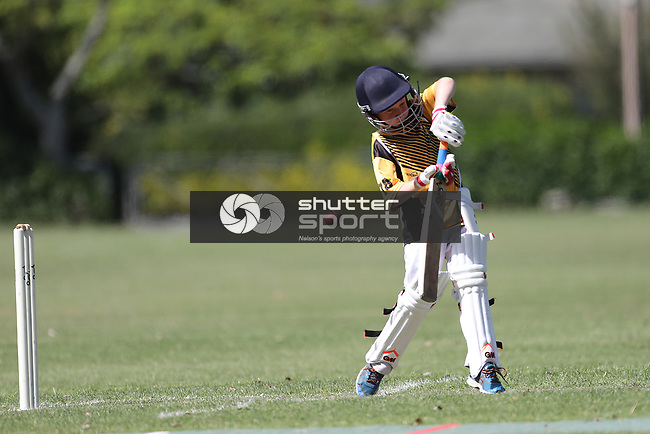 NELSON, NEW ZEALAND - DECEMBER 8: Saturday Morning Cricket at Green Meadows on December 8   2018 in Nelson, New Zealand. (Photo by: Evan Barnes Shuttersport Limited)