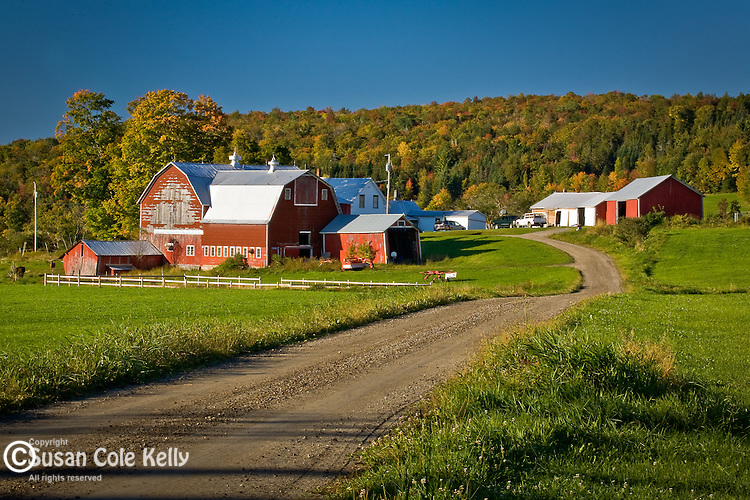 Fall foliage in Kirby, Northeast Kingdom, VT, USA