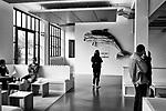 Gen&egrave;ve, le 18.09.2017<br /> Reportage dans les nouveaux locaux (anciennes usines Elna) de la HEAD aux Charmilles au bord du Parc Hentsch.<br /> Le Courrier / &copy; C&eacute;dric Vincensini