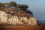 Cliff face, Upper Newport Bay, CA.