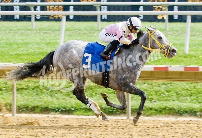 A True Imperialism winning at Delaware Park on 10/17/12