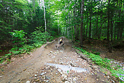 Eastside Road and Trail Repair Project -  This is a section of the Eastside Road that was washed out during Tropical Storm Irene. If the repair project is approved, erosion damage along this section will be repaired.<br />