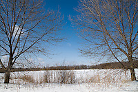Wawanosh Wetlands Conservation Area located on Blackwell Sideroad. Operated by the St. Clair Region Conservation Authority