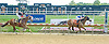 Trappist Monk winning at Delware Park on 7/30/12