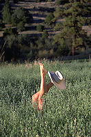 A woman's bare legs (one wearing a cowboy hat) emerge from within a green meadow.