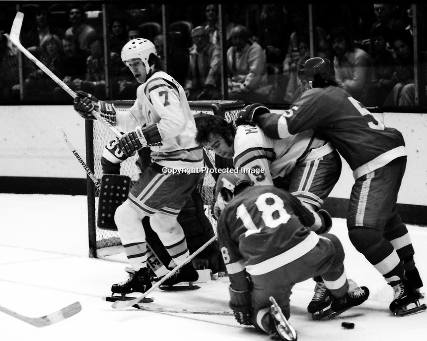 Seals vs Detroit Red Wings 1975 action:<br />