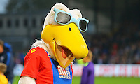 Crystal Palace mascot Pete the eagle during the EPL - Premier League match between Crystal Palace and Liverpool at Selhurst Park, London, England on 29 October 2016. Photo by Steve McCarthy.