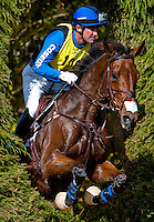 Fernhill Eagle, with rider Phillip Dutton (USA), competes during the Cross Country test during the Fair Hill International at Fair Hill Natural Resources Area in Fair Hill, Maryland on October 20, 2012.