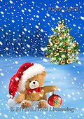 Marek, CHRISTMAS ANIMALS, WEIHNACHTEN TIERE, NAVIDAD ANIMALES, teddies, photos+++++,PLMP3433,#Xa# in snow,outsite,