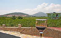 A view from the winery over the vineyard, hills, a house and in the foreground a glass of local spiced brandy alcohol. Cobo winery, Poshnje, Berat. Albania, Balkan, Europe.