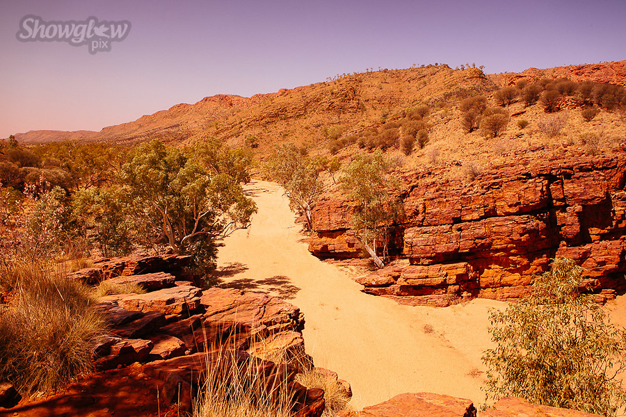 Image Ref: CA707<br />