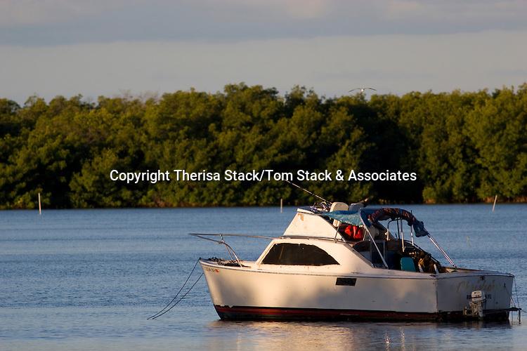 Old boat, Islamorada, Florida Keys
