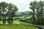 The peloton in action during Stage 1 of the Criterium du Dauphine 2019, running 142km from Aurillac to Jussac, France. 9th June 2019<br /> Picture: ASO/Alex Broadway | Cyclefile<br /> All photos usage must carry mandatory copyright credit (© Cyclefile | ASO/Alex Broadway)