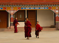 A moment in the day of little Buddhist monks at a monastery in the Himalayan foothills of Sikkim, India