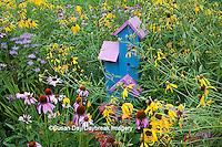 63821-207.04  Birdhouse in garden with Purple Coneflowers (Echinacea purpurea), Gray-headed Coneflowers (Ratibida pinnata), Pink Bee Balm (Monarda fistulosa) and Red Bee balm (Monarda didyma) Marion Co. IL