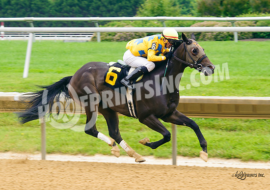 Lake Creek winning at Delaware Park on 6/15/16