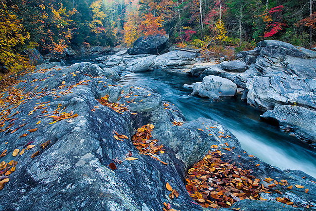 """Entrance to """"Seven Foot Falls"""" in autumn"""
