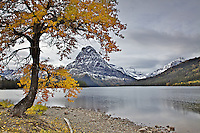 Two Medicine Lake where Mt. Sinopah towers above. Glacier National Park during fall is nirvana for those who love to get away from the crowds.