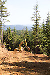 Ellsworth Creek Preserve, forest restoration, road building to allow logging road removal, The Nature Conservancy, Washington Chapter, Willapa Bay, Washington Coast, Washington State, Pacific Northwest, United States,