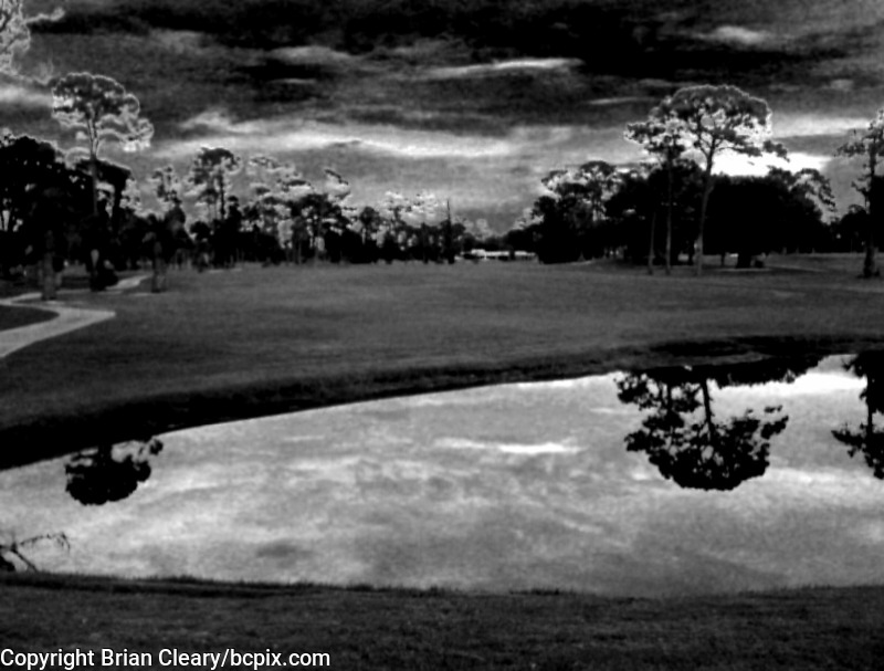 """A scene from Daytona Beach Golf Course, Daytona Beach FL.  Infrared effect created int he """"Camera Bag"""" iPhone app.  Photo taken with iPhone 3G.  (Photo by Brian Cleary/www.bcpix.com)"""