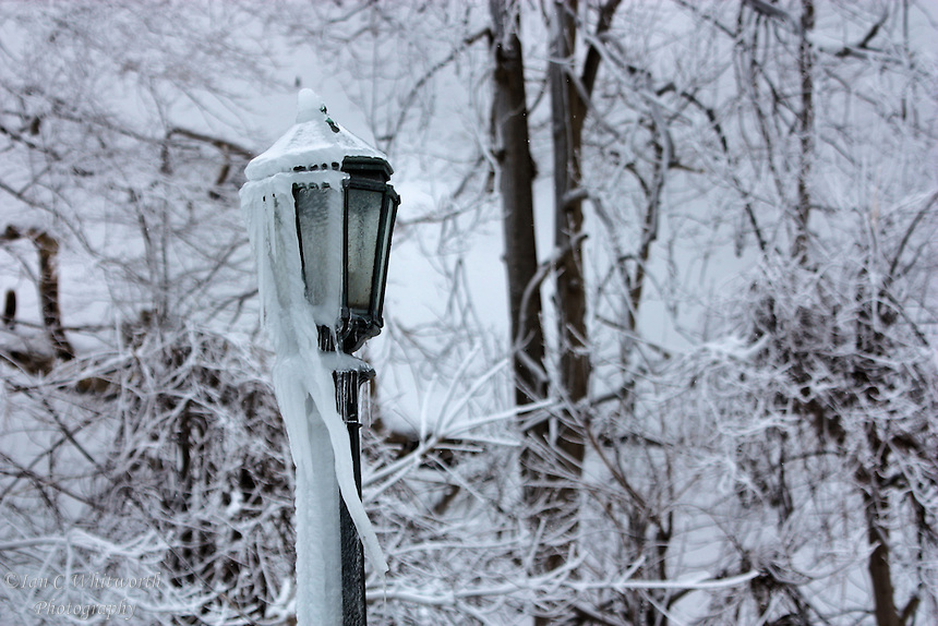 Winter lamp post at Niagara Falls