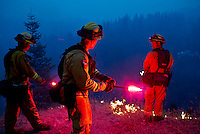 Firefighters throw fusees into a deep canyon during controlled firing operations to create a wide fire break along US Route 50 near the town of Pollock Pines, California, USA, on 18 September 2014. Fire crews around California fight 12 major fires across the state, including the King Fire, located 56 miles (90 kilometers) east of Sacramento, California, which more than doubled in size overnight to 70,994 acres (28,730 hectares) and 5% contained.