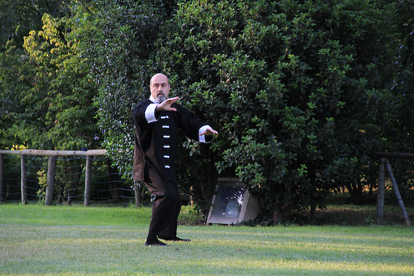 Man practicing Tai Chi in the park, Milan, Italy.