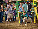 Opening day of the 80th Amador County Fair, Plymouth, Calif.<br /> <br /> Mutton Bustin' preliminary<br /> .<br /> .<br /> .<br /> .<br /> #AmadorCountyFair, #1SmallCounty Fair, #PlymouthCalifornia, #TourAmador, #VisitAmador