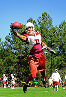 Jul 31, 2009; Flagstaff, AZ, USA; Arizona Cardinals wide receiver Larry Fitzgerald makes a one handed catch during training camp on the campus of Northern Arizona University. Mandatory Credit: Mark J. Rebilas-