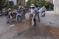MEDELLIN -COLOMBIA-20-08-2013. Cafeteros de Antioquia protestaron regando café en frente de la Federación del gremio en Medellín en el marco del paro nacional agrario que hoy se desarrolló en todo el país, empleados, magisterio, estudiantes y transportadores hicieron parte de los difrentes marchas y protestas./ Coffee growers of Antioquia protested throwing coffee in front of the guild Federation as a part of agrarian national strike that had developed across the country; workers, teaching, students, transporters took part of the marchs.  Photo: VizzorImage/Luis Rios/STR