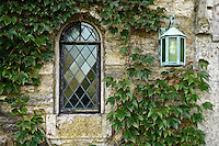 Church window detail with ivy.