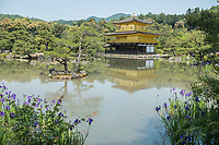 Surrounded by a pine forest and picturesque pond, Kinkakuji (Golden Pavilion) is a Zen temple in northern Kyoto whose top two floors are completely covered in gold leaf.