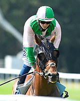 Duke of Hazard ridden by David Probert goes down to the start of The AJN Steelstock Sovereign Stakes  during Horse Racing at Salisbury Racecourse on 9th August 2020
