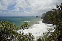 Coastline near Pololu Valley on the Big Island of Hawaii