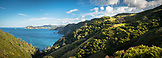 NEW ZEALAND, Coromandel Peninsula, The Pacific Ocean around the Coromandel Peninsula, Ben M Thomas