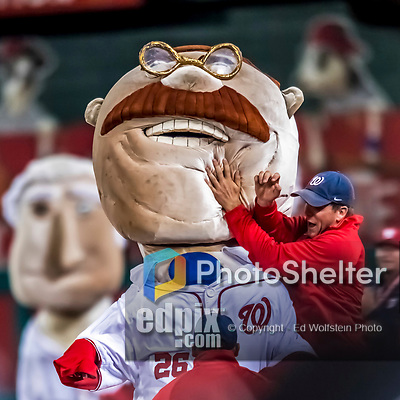 6 October 2017: Washington Nationals Mascot Teddy Roosevelt is tackled by a grounds crewman between innings of the first game of the NLDS against the Chicago Cubs at Nationals Park in Washington, DC. The Cubs shut out the Nationals 3-0 to take a 1-0 lead in their best of five Postseason series. Mandatory Credit: Ed Wolfstein Photo *** RAW (NEF) Image File Available ***