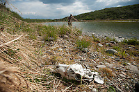 150620-JRE-7981E-0006 A caribou skull, its antlers salvaged sawn off by hunters, greets fly fishermen on a small tundra pond in interior Alaska.