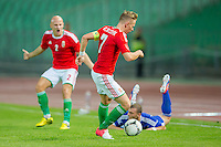 Friendly football match Hungary playing against Israel in Budapest, Hungary on August 15, 2012. ATTILA VOLGYI