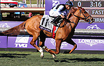 November 1, 2019: Sharing, ridden by Manuel Franco, wins the Breeders' Cup Juvenile Fillies Turf on Breeders' Cup World Championship Friday at Santa Anita Park on November 1, 2019: in Arcadia, California. Bill Denver/Eclipse Sportswire/CSM