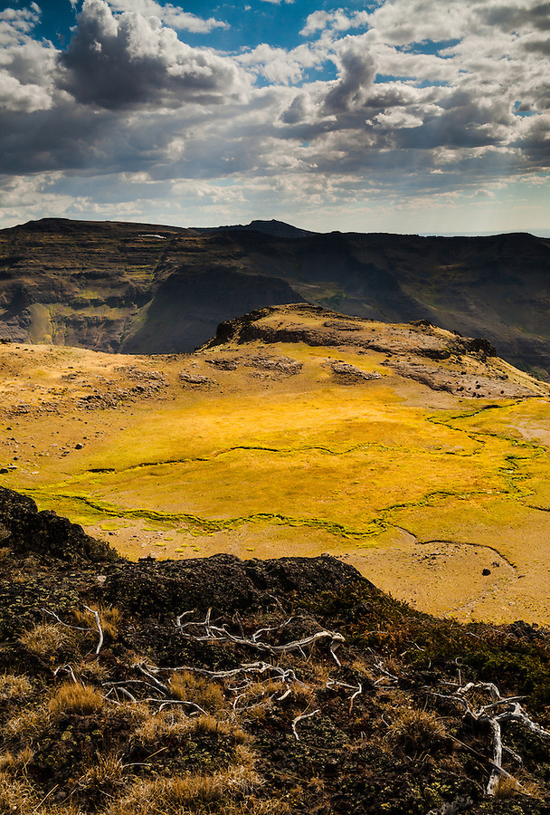 Spotlighting illuminates a fertile patch of ground in an otherwise barren landscape in the Steens Mountain area of Southeast Oregon along a cliff side.