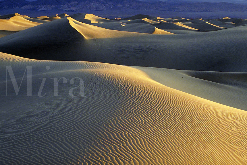 Sand dunes. California USA Death Valley National Monument.