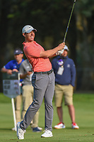 Rory McIlroy (NIR) watches his approach shot during round 4 of the World Golf Championships, Mexico, Club De Golf Chapultepec, Mexico City, Mexico. 2/24/2019.<br /> Picture: Golffile | Ken Murray<br /> <br /> <br /> All photo usage must carry mandatory copyright credit (© Golffile | Ken Murray)