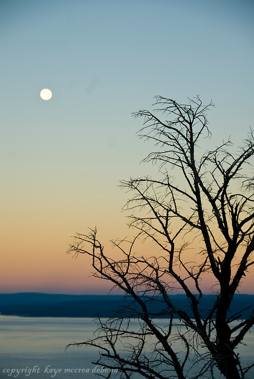 Silhouette, moon sets and sunrises of Yellowstone