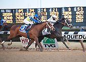 Aqueduct - 2/02/13 - Withers and Toboggan