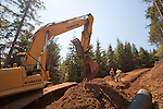 Ellsworth Creek Preserve, forest restoration, culverts, road building to allow logging road removal, Nature Conservancy, Washington Chapter, Emerald Edge Project, Willapa Bay, Naselle River, Pacific County, Washington Coast, Washington State, Pacific Northwest, United States,