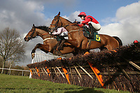 In The Dock ridden by Michael Byrne (5) in jumping action in the Ben Burgess Novices Handicap Hurdle