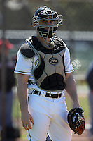 February 26, 2010:  Catcher Dominick D'Agata of the Purdue Boilermakers during the Big East/Big 10 Challenge at Raymond Naimoli Complex in St. Petersburg, FL.  Photo By Mike Janes/Four Seam Images
