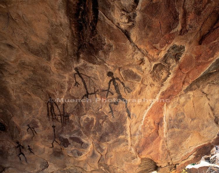 Anza Borrego Desert site Anza Borrego SP  CALIFORNIA