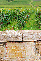 Vineyard. La Romanee Conti Grand Cru. Vosne Romanee, Cote de Nuits, d'Or, Burgundy, France