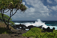 Waves breaking on the lava rocks at Keanae on Maui in Hawaii